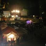 Festival Interférences 2011 (75)