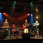 Scène Musicale by BeatBurst   Art & Lumière  Furdenheim 2011  (18)