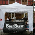 Scène Musicale by BeatBurst   Art & Lumière  Furdenheim 2011  (29)